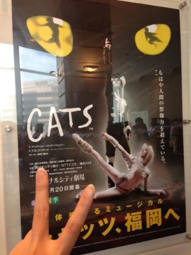 CAT公演