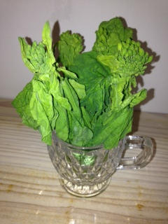 nanohana菜の花